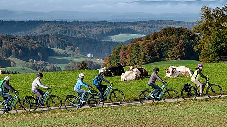 Guided e-bike tour through the Emmental with Rösti for lunch.