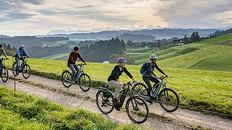 Culinary spring tour by e-bike with local farmhouse cuisine.