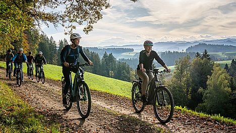 Guided e-bike pleasure tour to two historical bear restaurants.